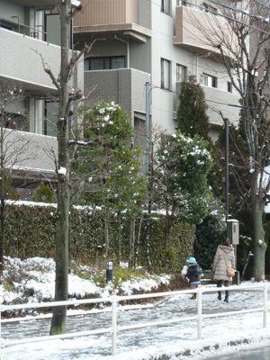 雪あそび.jpg