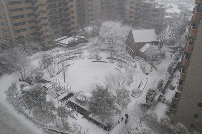 雪の日01.jpg