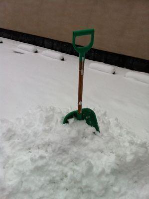 雪の日04.jpg