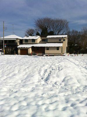 雪の翌日01.jpg