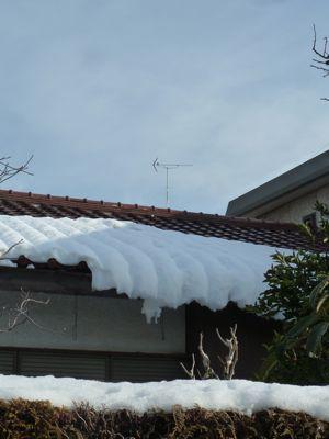雪の翌日02.jpg