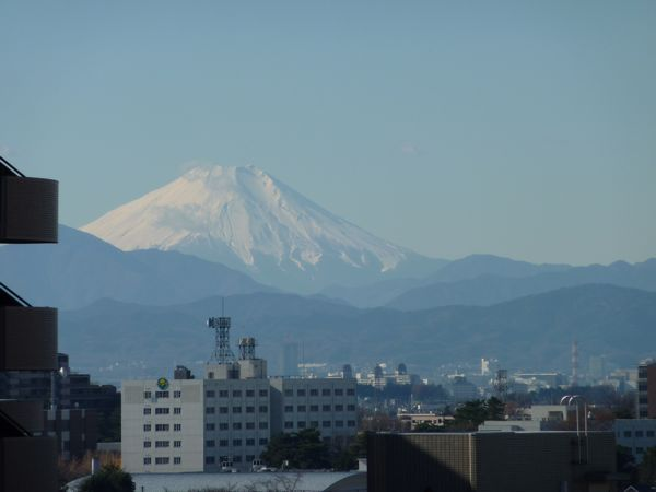fuji1220.jpg