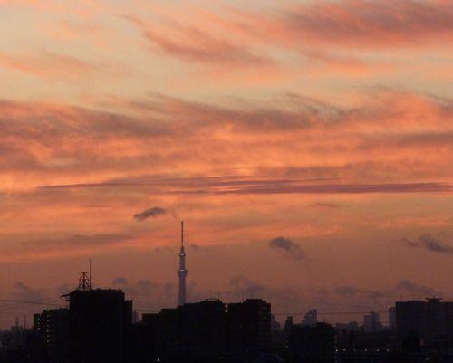 sky tree0816001.jpg